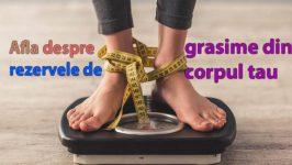 Cum se constituie rezervele de grasime ?