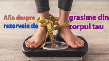Cum se constituie rezervele de grasime
