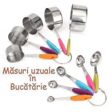 Masuri Uzuale in Bucatarie-featured