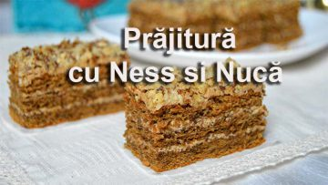 Prajitura cu Ness si Nuca