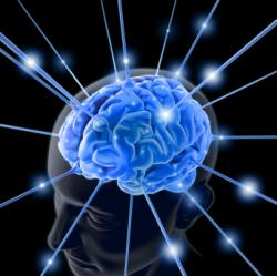 Dieta pentru Creier Performant