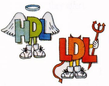 HDL-LDL colesterolul