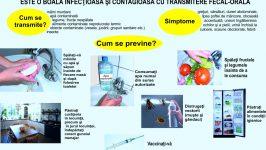 Diete Meniuri pentru bolnavii de Hepatita
