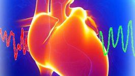 Dieta Insuficienta Cardiaca