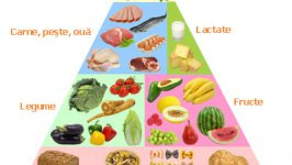 Despre alimentatie