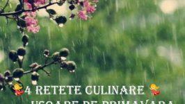 4 Retete Culinare Usoare de Primavara