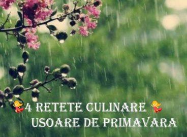 Retete Culinare de Primavara